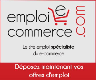 emploi ecommerce